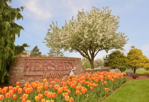 Tops Picks for Spring in Hershey, PA