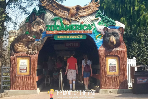 Join the ZooAmerica Scavenger Hunt