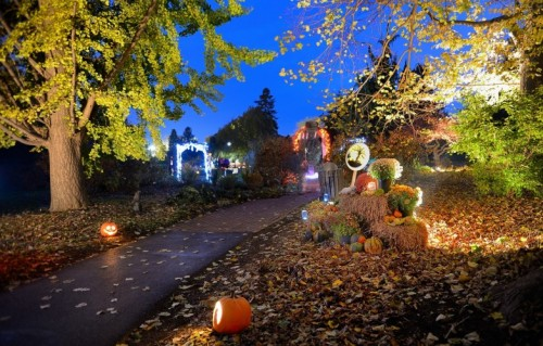Pumpkin Glow Returns to Hershey Gardens for Halloween, Bigger & Brighter Than Ever!