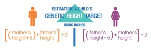A handy formula used to help estimate a child's genetic height target (the  range of their adult height) is as follows: