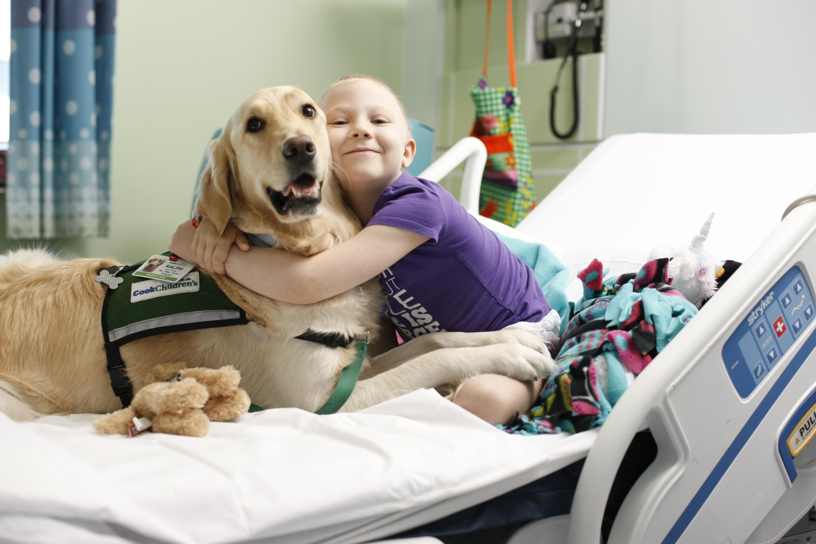Pets Should Be Treated Like Family