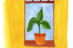 Illustration of plant in front of open window