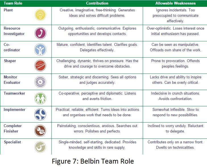 Belbin Team Role profiles