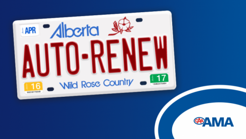 Vehicle Registration Auto Renew Helps Drivers Remember To