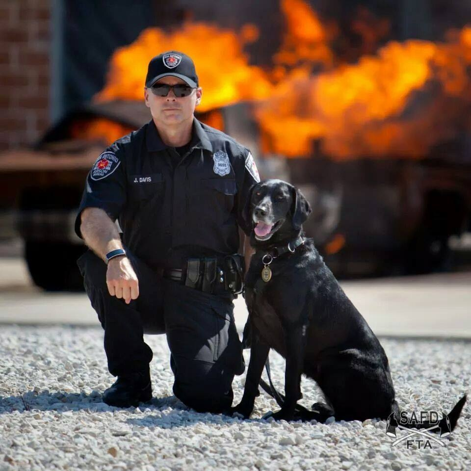 Arson Dog with handler fire in background