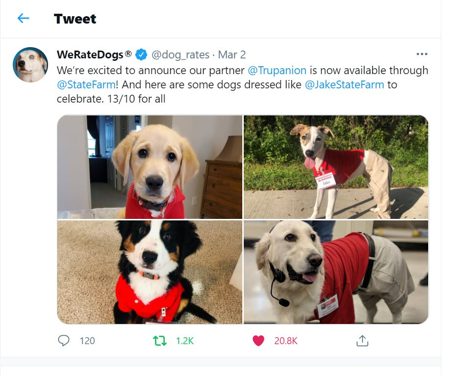 We Rate Dogs Twitter post