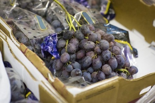 Donations of grapes
