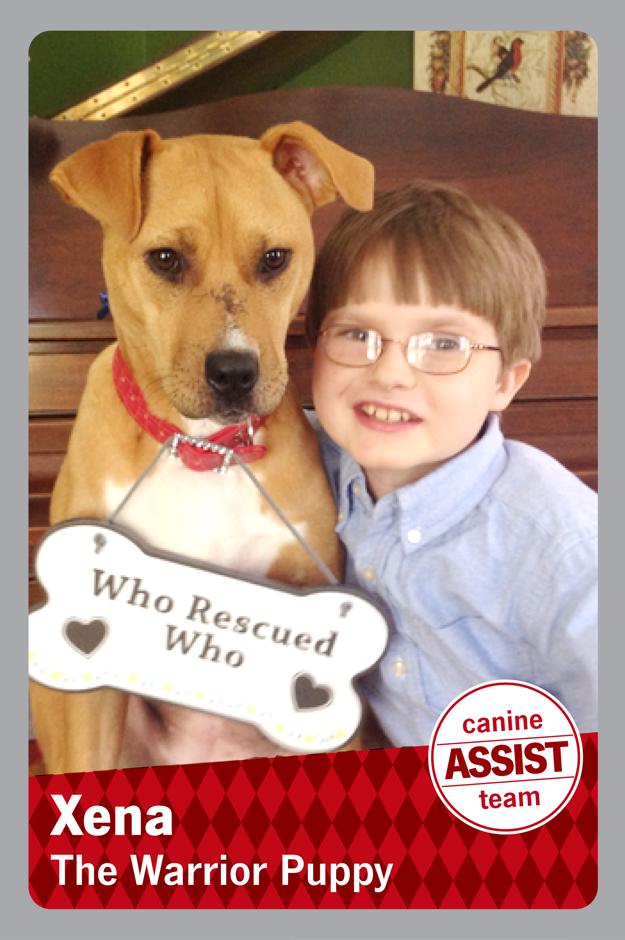 picture of boy with glasses on on hugging a dog that has a bone shaped sign hanging from his collar that reads Who rescured who and then it reads Xena The warrior Puppy