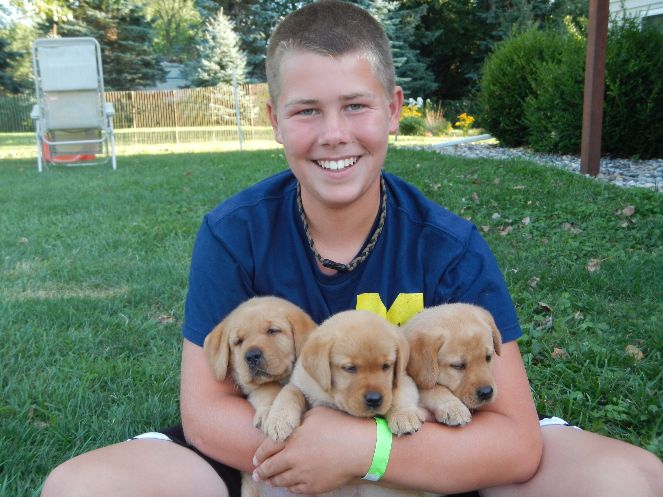 Teenage boy with 3 sister puppies