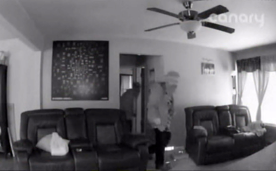surveillance picture of living room caught with Canary Home Security