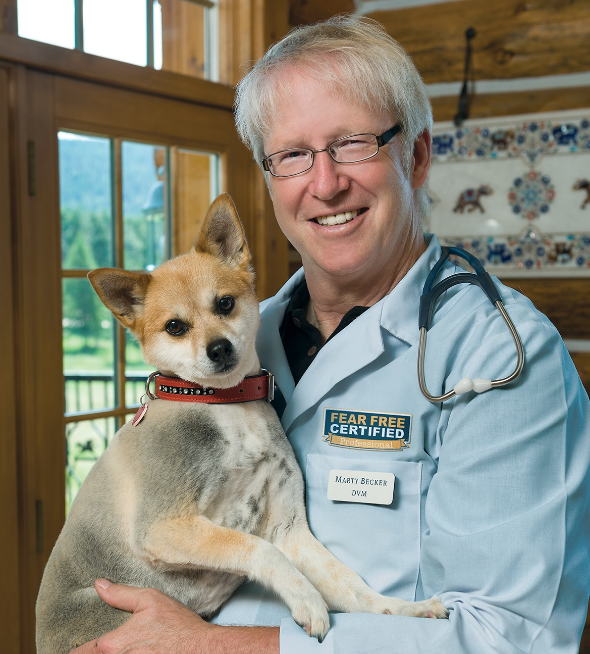 dr marty canine code video