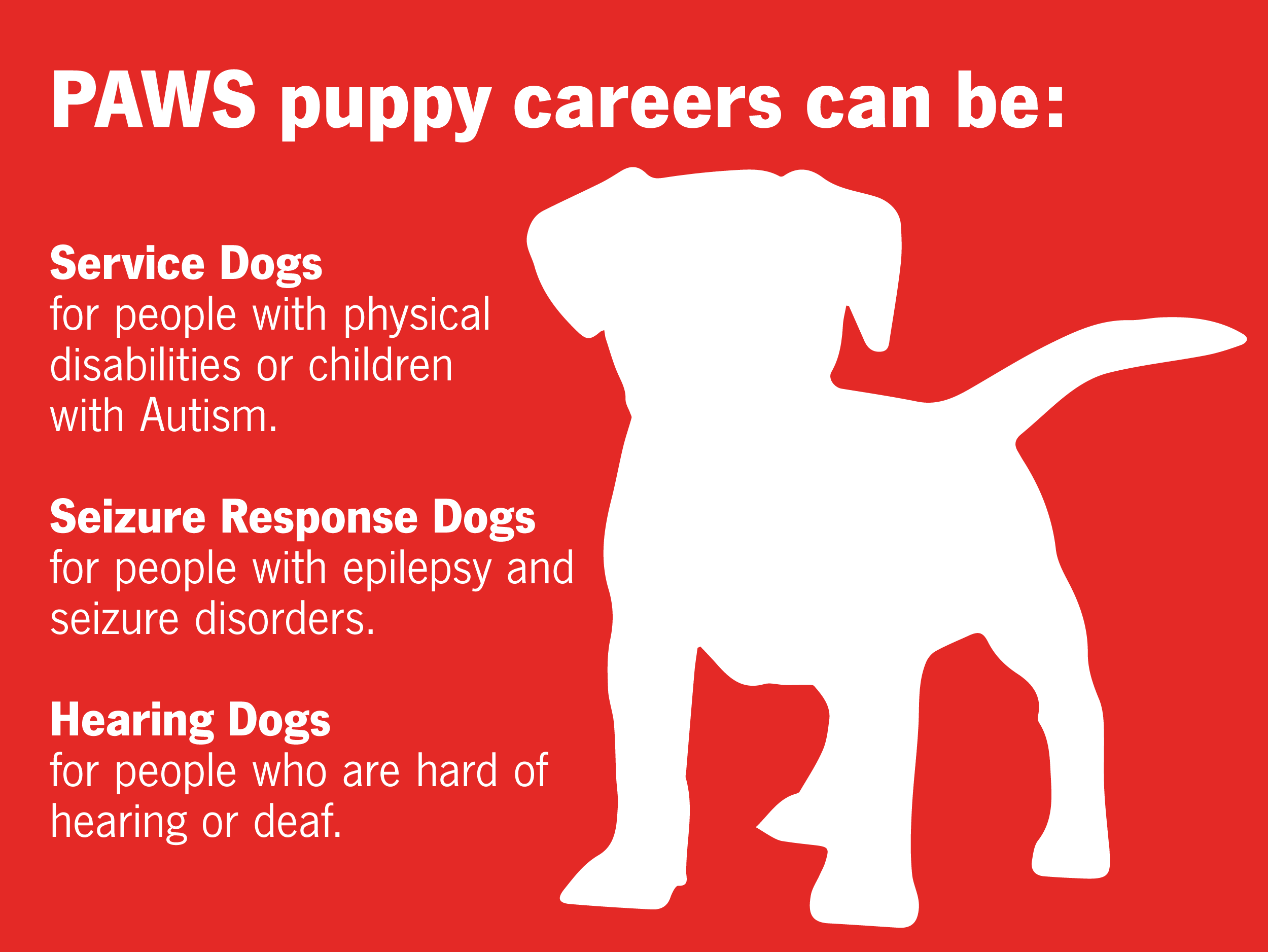 Puppies can be service dogs, seizure response dogs, or hearing dogs