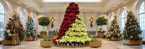 Hershey Gardens Debuts Designer Christmas Trees for the Holidays