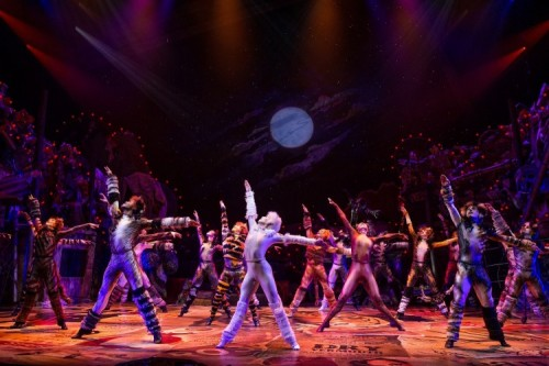 9 Fascinating Facts About CATS the Musical