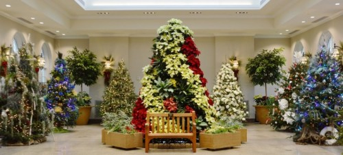 Hershey Gardens Celebrates with the Holidays with Christmas Trees, Kids' Crafts and Santa