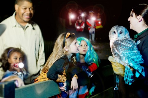 Family-Friendly Fun at ZooAmerica in Hershey This Fall