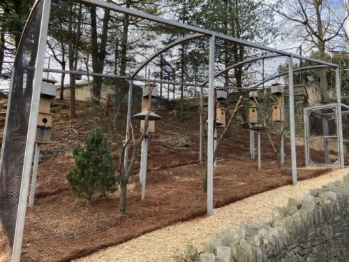 ZooAmerica Opens New Parrot Habitat