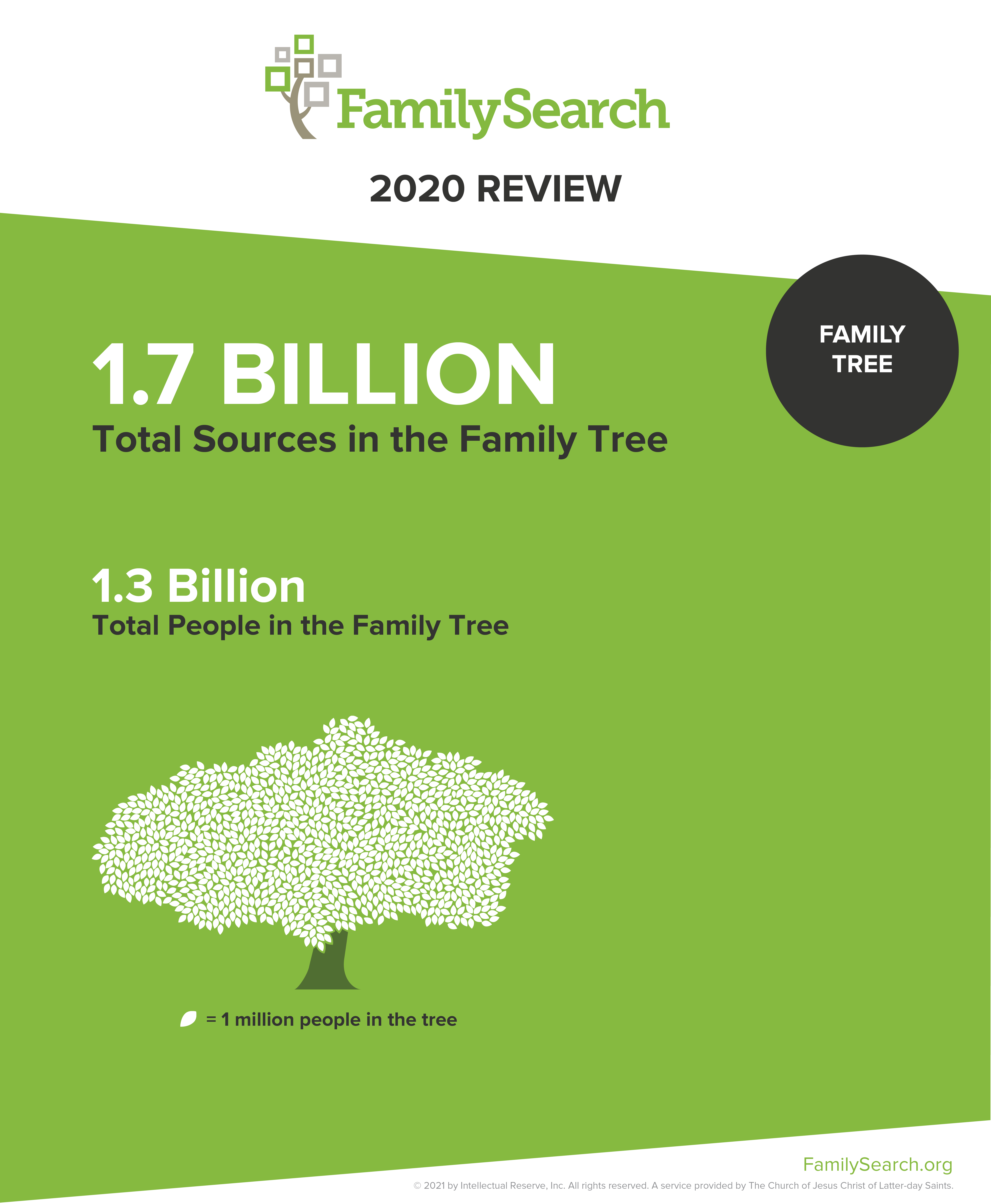FamilySearch Family Tree 2020 Infographic