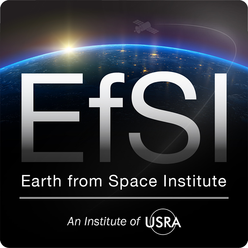 Earth from Space Institute (EfSI) logo
