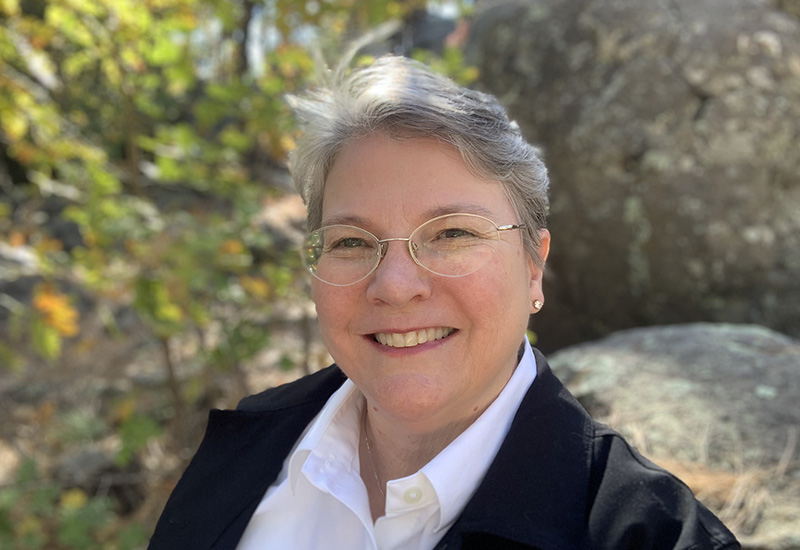 Dr. Lisa Gaddis, Director, Lunar and Planetary Institute