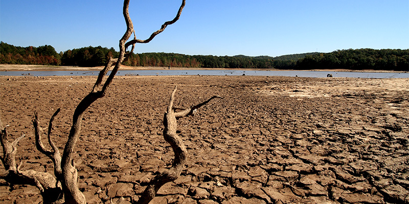 Image of drying lake bed during severe drought