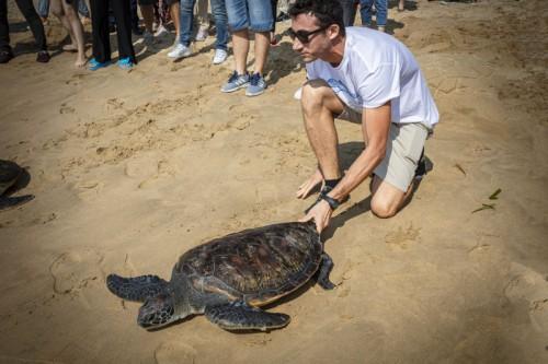 海龟放归活动现场