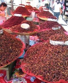 Chapulines at a market. Jeffrey H. Cohen