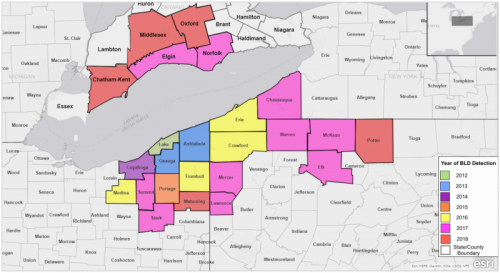 Map Of New York Ohio Area.Beech Trees Are Dying And Nobody S Sure Why