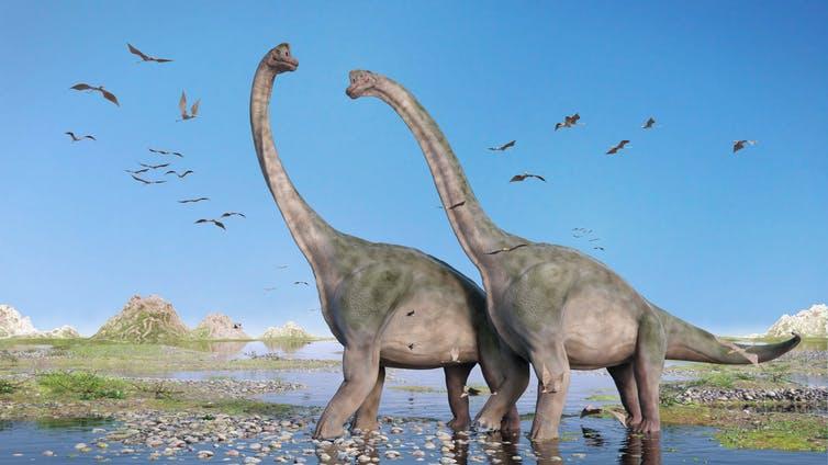 Brachiosaurus wandering through a primeval landscape.