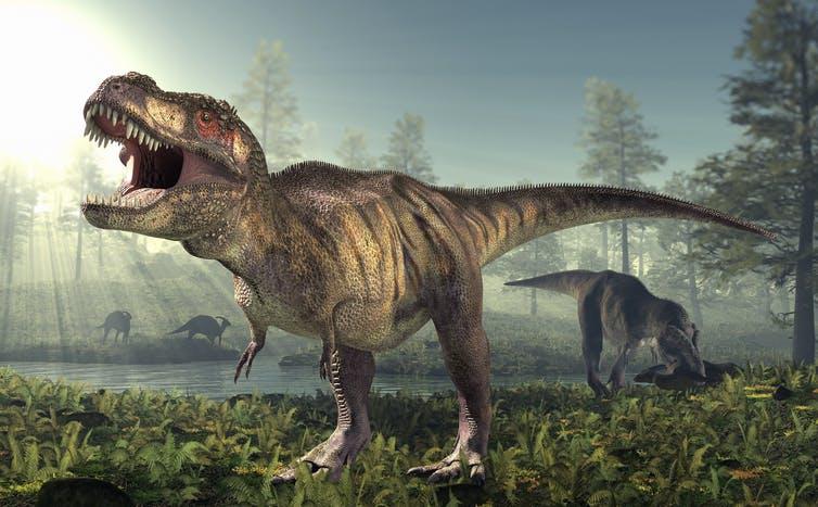 Photo illustration of a Tyrannosaurus rex