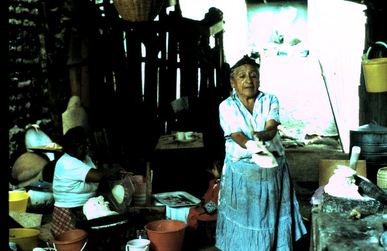 A Zapotec woman making tamales using locally grown maiz, or corn