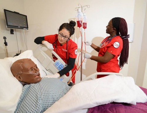 Nursing Students working with a simulation mannequin