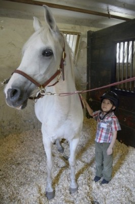 HSS Adaptive Sports Academy at Endeavor Therapeutic Horsemanship in Mount Kisco - David in stable with horse