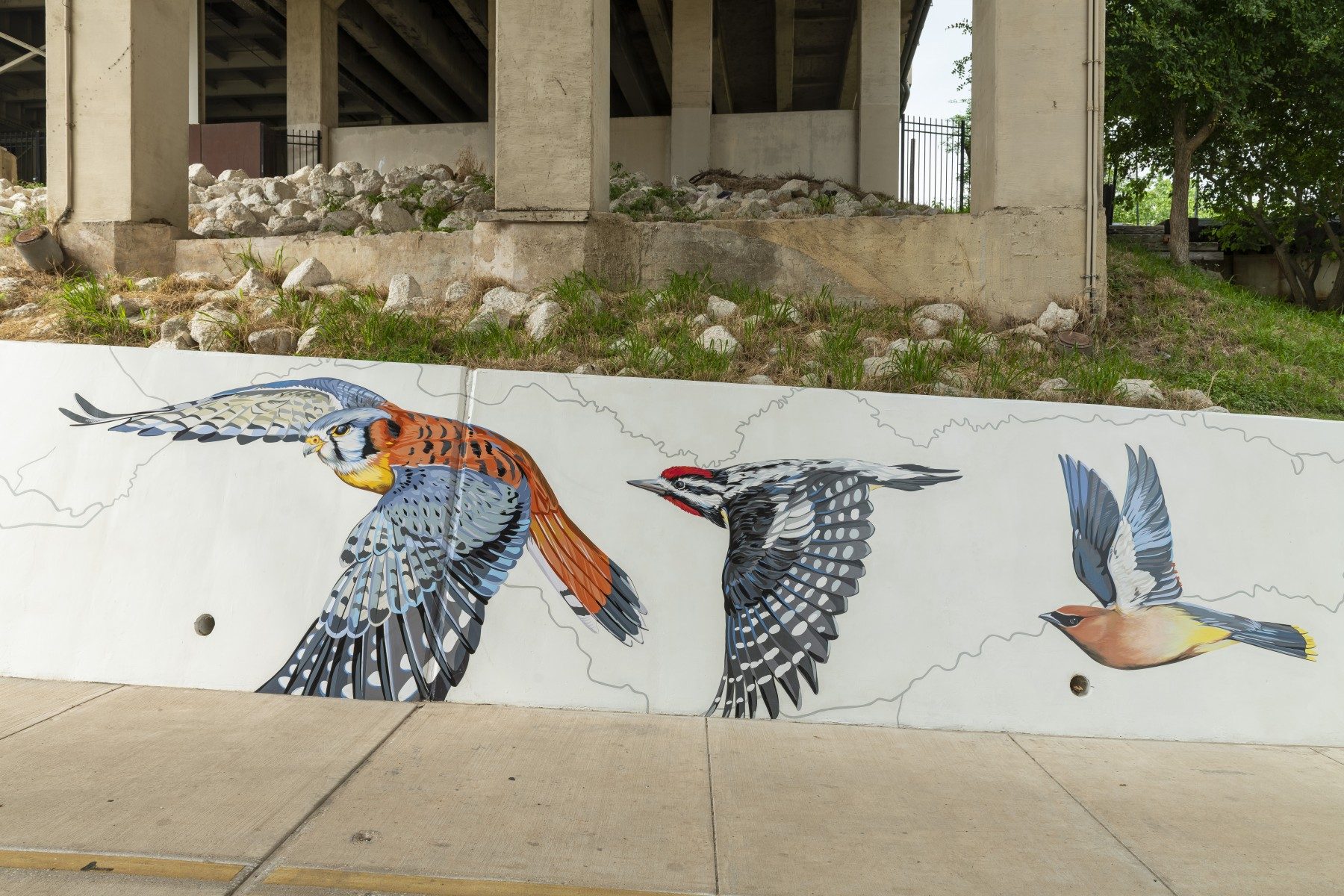 confluence mural